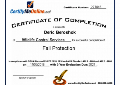 OSHA Certified in Fall Protection